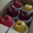 お義父さんのリンゴ