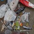 ゴミ拾い日記 180902~180908