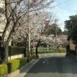 今日の雁宿公園