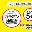 お得な5日間!!