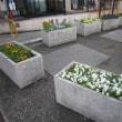 八千代台 三角スペースの花壇