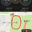冬の小走り日和