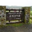 桃岩展望台コースと利尻観光バス