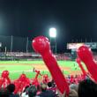 野球を見て来ました。