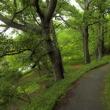竜田公園/奈良県生駒郡斑鳩町稲葉車瀬2丁目