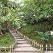 兼六園、山崎山。昔、ここで、よく胡桃の実を拾って遊びました。