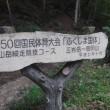 檜枝岐川 保太橋沢