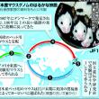 実験用マウス、祖先は江戸時代のペット 遺伝研が解明