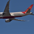ガンジー生誕150年 ロゴ   エアインディア  787-8.    VT-ANH.  始めて出会うがメチャ控えめなロゴ❣️