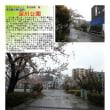 散策 「東京南東部-263」 深川公園