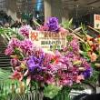 YOSHIKI CLASSICAL 2018 紫に染まった夜  2018.11.12