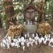 九州宗像家の祭祀の場 沖ノ島 (実際には行けませんがテレビ番組を見て仰天しました)2017年11月1日