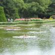 京都府立植物園パートⅢ