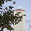 塔と月、凍えるススキ-冬の朝の風景