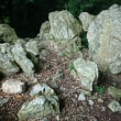 葦毛湿原~神石山