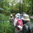 9月20日(水)のっぽろの森自然観察の様子