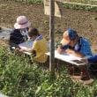 耕し人イベント野菜の絵を描いちゃおう