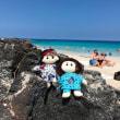 ハワイ旅2018 ビッグアイランド②