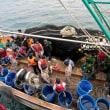 漁業界の移住者不足によるピンチ  タイ