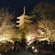 東寺のライトアップは良かった!