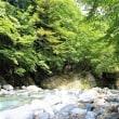 山岳点景:夏、青露流水