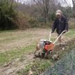 タマネギの畝と、その周辺を綺麗に除草