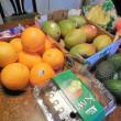 フルーツダイエット開始から1年経過!。さて、結果は?。