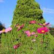 【台風21号】関西の植物園・庭園の開園情報について(2017年10月22日午前10時現在)