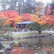 札幌まちなか探検隊    昨日の景色   中島公園3
