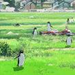 ペンギン・ハイウェイ  監督/石田祐康