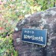 鉱物堪能旅行 1 博物館/中津川市鉱物博物館