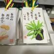 四国巡礼絵画展示会の準備5