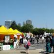協会後援・東京ビーガングルメ祭り(木場公園) 4月22日(日)の報告