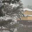 京都北区・今冬初の雪化粧した「金閣寺のライブカメラ」