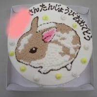 うさぎのケーキ☆