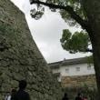 大々的な修復工事中だが、あえての世界文化遺産 国宝姫路城への巻