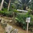 石垣島✨初日