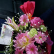 5月22日 明日の誕生花・ゆかりの花 花言葉は?(*^O^*)☆