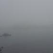今日も霧の朝