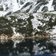 立山黒部アルペンルート -- そこはもう冬でした。