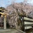 2015年3月29日(日) 山科 大石神社