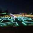 茨城県フラワーパークイルミネーション