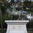 淡路島・伊弉諾神宮「以前は禁足の聖地だった  御本殿」