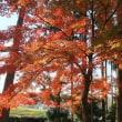 ☆秋から冬へ・・・☆