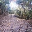 四王寺山@太宰府市 四王寺山の遅い秋探しとまだ見ぬルート歩きをしてきました!!