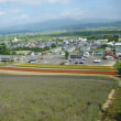 福岡発〜バイクで宗谷岬へ・・・6日目 美瑛町のファーム