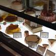 長崎市浜口町のケーキ屋さん 雨上がり晴天なり