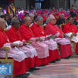 トマス・アクイナス前田枢機卿様の枢機卿任命を喜び、霊的花束をもってお祝い申し上げます。