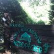 山梨県 ウッドペッカーキャンプ場