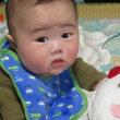 6か月の孫と2か月のりんごと・・・順調に育っています